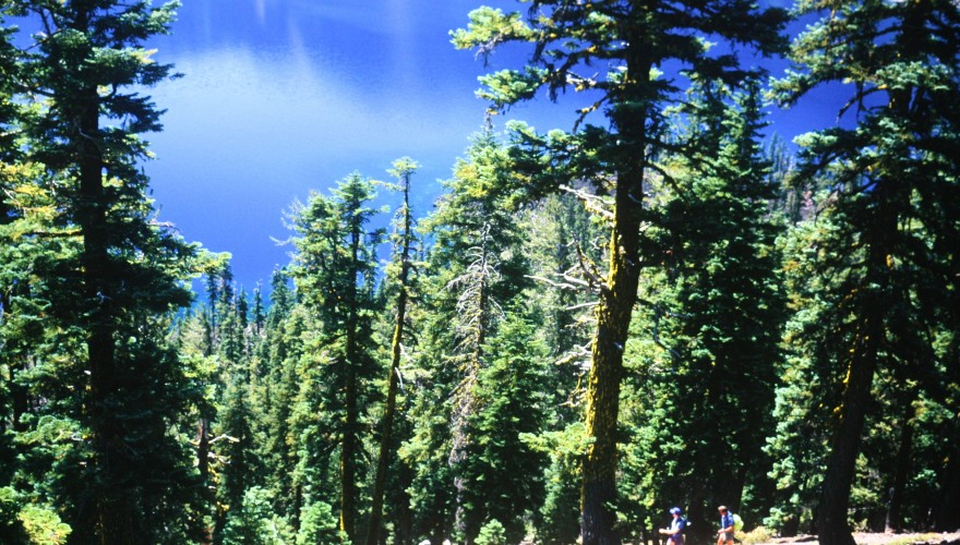 What to Pack on Your Oregon Vacation