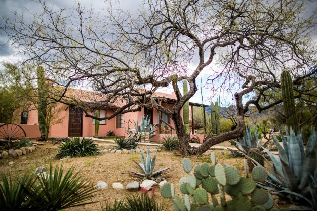 pink ranch-style house surrounded by cacti
