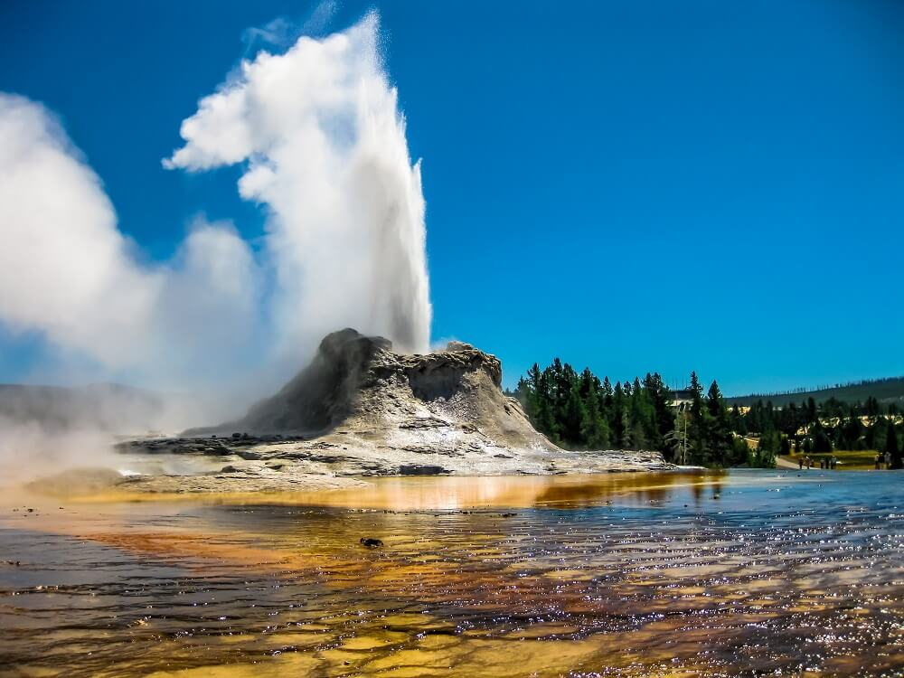 castle geyser in yellowstone national park