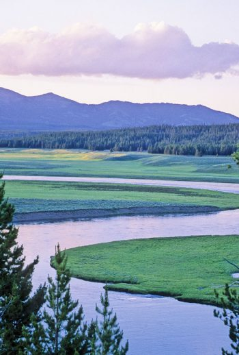 The Yellowstone River flowing through Hayden Valley in Yellowstone National Park