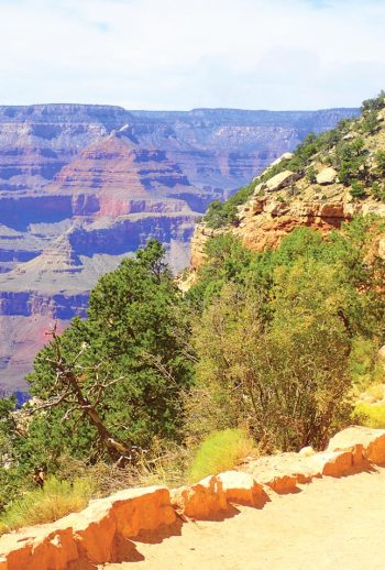 Arizona_Grand_Canyon_Natl_Park_Family