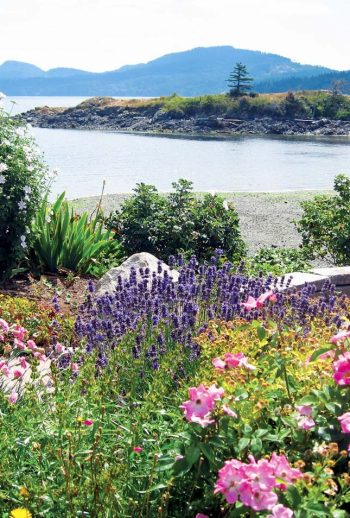 A floral arrangement near Eastsound in the San Juan Island Washington