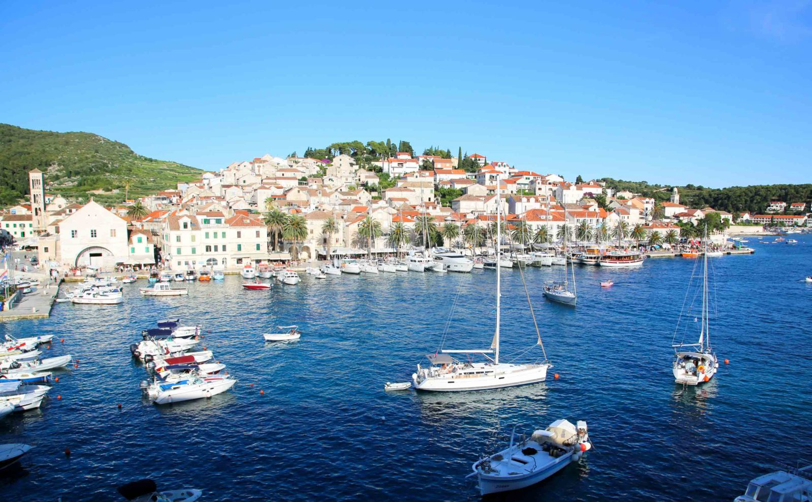 coastal town of dalmatian in croatia