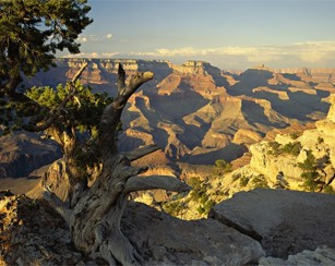 Grand Canyon. Best National park vacations